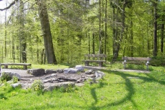 Birchweiher, Möriken
