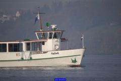Hallwilersee Flotte - MS Hallwil